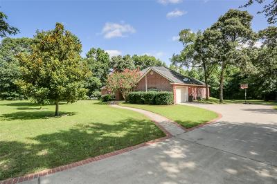 Montgomery Single Family Home For Sale: 18476 Hills Lake Court