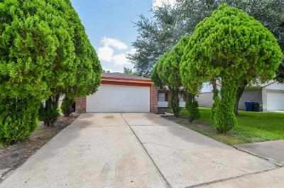Sugar Land Single Family Home For Sale: 10423 Permian Drive