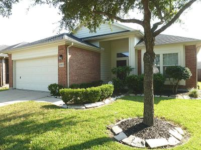 Pearland Single Family Home For Sale: 12912 Meadow Springs Drive