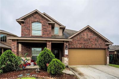 Houston Single Family Home For Sale: 15802 Egret Field Lane