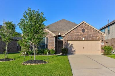 Pearland Single Family Home For Sale: 3127 Morgan Meadow Lane
