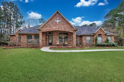 Huffman Single Family Home For Sale: 334 Reserve Ridge Drive
