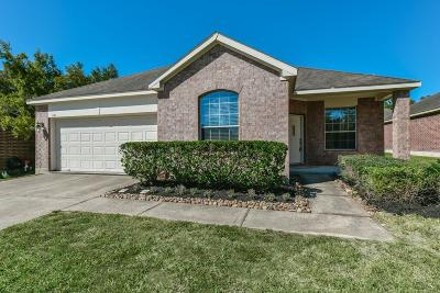 Conroe Single Family Home For Sale: 951 Crannog Way