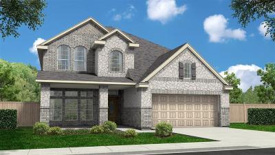Missouri City Single Family Home For Sale: 3719 Altino Court