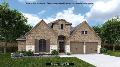 New Caney Single Family Home For Sale: 23523 Kenworth Drive