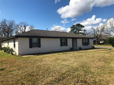 Brazoria Single Family Home For Sale: 21005 N Highway 36