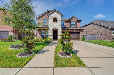 Houston Single Family Home For Sale: 2214 Hidden Meadow Lane