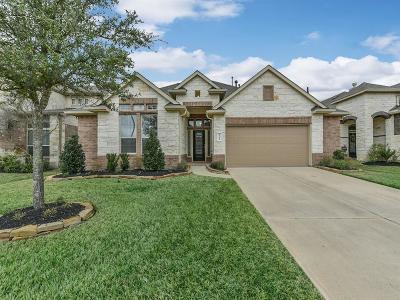 Katy Single Family Home For Sale: 23414 Perla Verde Terrace Circle