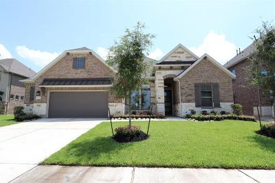 Tomball Single Family Home For Sale: 19138 Blue Hill Lane