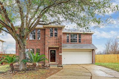 Fort Bend County Single Family Home For Sale: 206 Fort Sumter Court