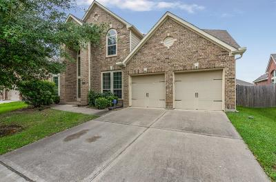 Pearland Single Family Home For Sale: 13603 Briar Rose Drive