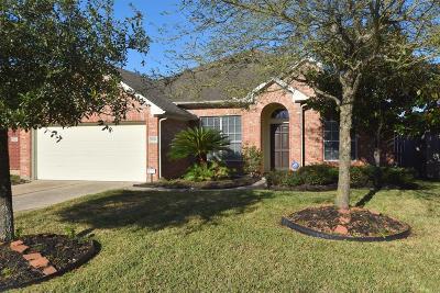 Houston Single Family Home For Sale: 5922 Glenneyre Lane