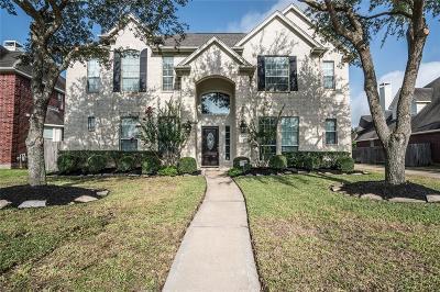 Sugar Land Single Family Home For Sale: 5014 Briar Stone Lane