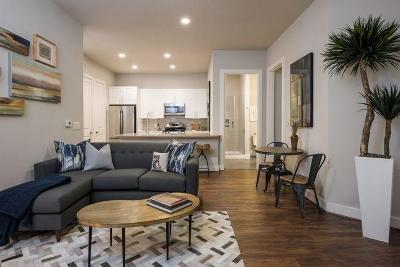 Harris County Rental For Rent: 919 Gillette Street #2082