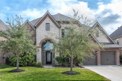 Pearland Single Family Home For Sale: 3225 Seneca Landing Lane
