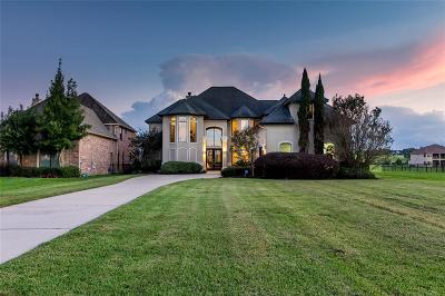Montgomery Single Family Home For Sale: 11581 Grandview Drive