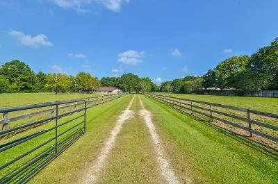 Tomball Farm & Ranch For Sale: 19320 Juergen Road