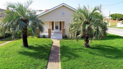 Galveston Multi Family Home For Sale: 4202 Avenue T 1/2
