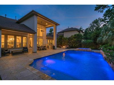 Montgomery Single Family Home For Sale: 110 Sunset Terrace Court