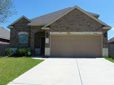 Katy Single Family Home For Sale: 4230 Bergamo Shores Drive