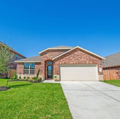 Porter Single Family Home For Sale: 22006 Pheasant Bend Lane