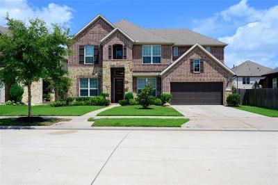 Sugar Land Single Family Home For Sale: 4618 Rockton Hills Ln