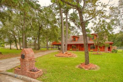 Baytown Single Family Home For Sale: 9738 Ellen Street