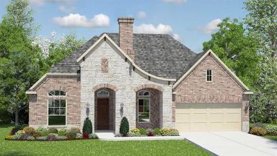 Conroe Single Family Home For Sale: 14003 S Evergreen Ridge Court