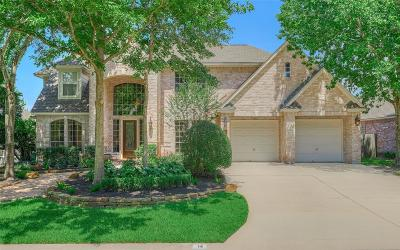 The Woodlands Single Family Home For Sale: 14 Twilight Plain Place