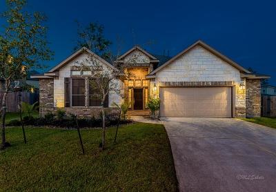 Tomball Single Family Home For Sale: 20906 Majestic Manor Court