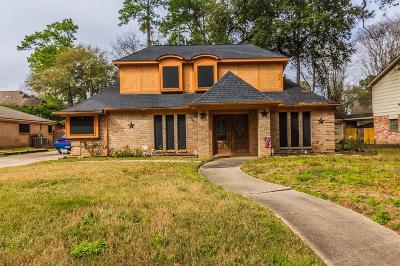 Houston Single Family Home For Sale: 2927 Blue Glen Lane