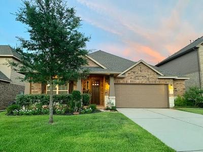 Conroe Single Family Home For Sale: 233 Dove Meadow Drive