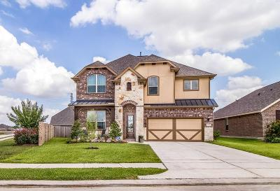 Pearland Single Family Home For Sale: 2703 Parkside Valley Lane