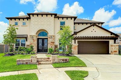 Friendswood Single Family Home For Sale: 848 Sage Way Lane