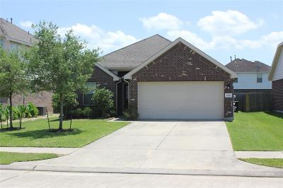 League City Single Family Home For Sale: 3039 Boxwood Springs Lane