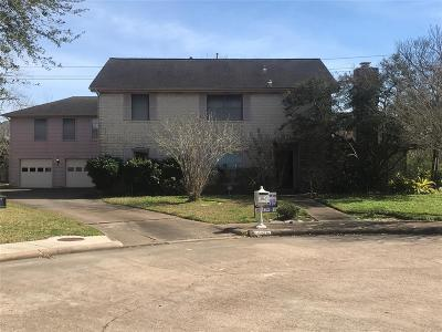 Pearland Single Family Home For Sale: 2301 Kerry Circle