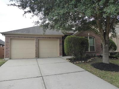 Pearland Single Family Home For Sale: 13316 Highland Lake Lane