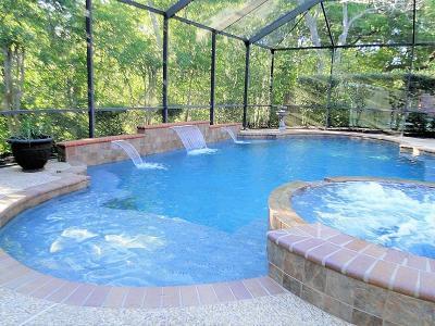 Lake Jackson Single Family Home For Sale: 425 Huckleberry Drive