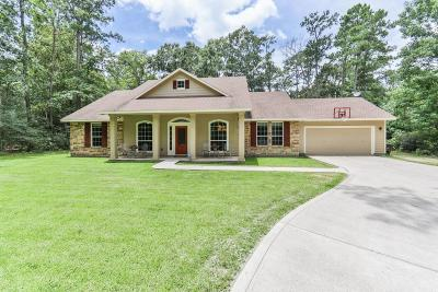 Single Family Home For Sale: 27003 Spotted Pony Court