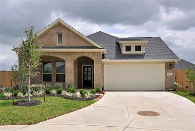League City Single Family Home For Sale: 2609 Pines Trace Lane