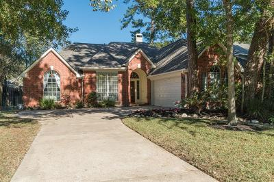Houston Single Family Home For Sale: 9122 Woodwind Lakes Drive