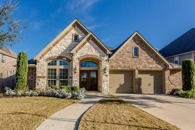 Riverstone Single Family Home For Sale: 4127 Pebble Heights Lane