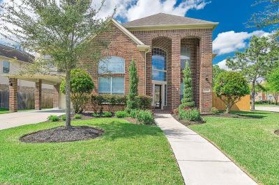 Katy Single Family Home For Sale: 26202 Goldenport Lane