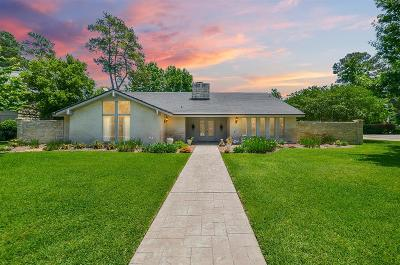 Houston Single Family Home For Sale: 6102 Rolling Water Drive