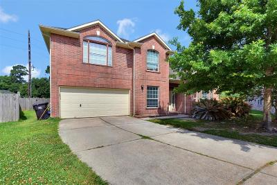 Spring Single Family Home For Sale: 3003 Trinity Pass Court