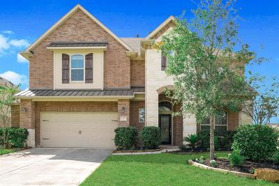 The Woodlands Single Family Home For Sale: 41 S Greenprint Circle