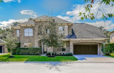 Houston Single Family Home For Sale: 2826 S Cotswold Manor Drive