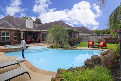 Friendswood Single Family Home For Sale: 1604 Orlando Street