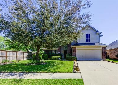 Houston Single Family Home For Sale: 11126 Barrow Lane
