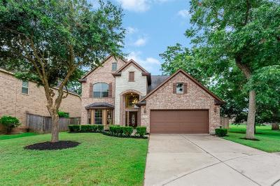 Sugar Land Single Family Home For Sale: 4415 Sweet Rose Court
